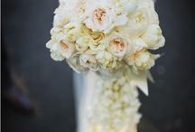Flowers / by Chloe Aquamarine