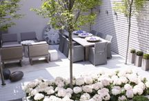 Outdoor space / by Carmen Silver