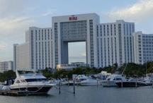 Cancun Nov 2012 / by Jennifer Hanley Kerns