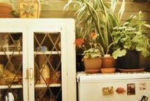Beautiful Rooms With Plants In Them / by Victory Gardens
