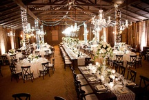 Wedding Designs / by Meredith Nelson