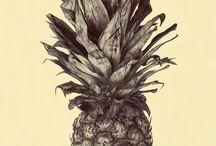 Illustrations  / by Wessel van Rensburg