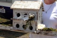 {Bird}houses / by Jodi Keller