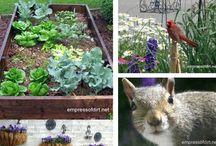 Earth magic / Gardening, gardens, flowers, yards / by Jenna Robinson