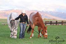 Horses / by Kati Macy