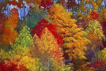 Colores del otoño bellos / Otoño color. Rocio  / by jose alonso