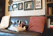 Living Room Update Ideas / We want to redo our living room and here are some ideas I have. / by Amie Lawson