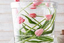 les.fleurs / by Julie Herpels