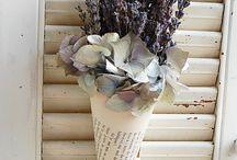 Color me purple / by TraceyandErnest Hires