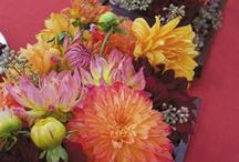 ALL FLOWERS! / by Linda Toews