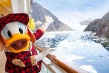 Disney Cruise to Alaska / by Rebecca Rider