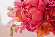 . beautiful florals . / by tonya | the social lush