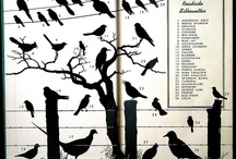 Bird on a Love Wire / by Olivia Cervantes