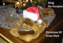 Christmas Elf Texas Style / Sting The Scorpion. / by Planet Weidknecht
