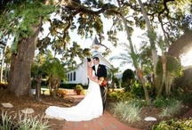 Wedding Reception and Event Sites / Wedding reception locations and event sites listings for the bridal couple to consider for having their wedding ceremony and reception / by Wedding Bedazzle