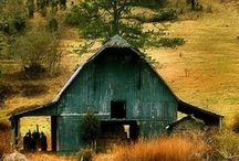 Barns / by Whitney Hayes Shaw