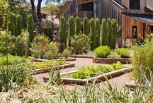 Gardens / by Home Bunch