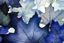 Seasons - Winter / by Jennifer Takato