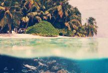 Hawaii, My Paradise / by Kylie Crawford