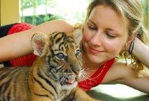 Thailand trip / by Annie Hunter