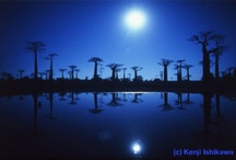 Moonlight, Moonlight / by Takeshi Ito