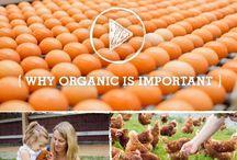 Organic Food Love / by Organic Runner Mom