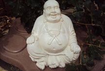 Buddha / by Janet Garcia