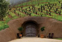Exploring Wine Caves / by Local Roots Food & Farm Tours