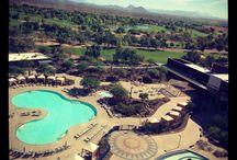 STAY: Scottsdale / by Experience AZ