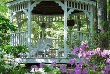 garden ideas / by Brianna Holifield