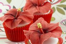 cupcakes / by Maria Andujar
