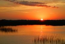 Sunrise / by T.J. Phillips