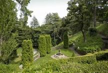 garden / by Maureen Pitts