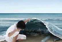 ocean / by Beth Tietboehl