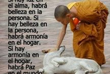 Imagenes y frases! :) / by Melly Rodriguez