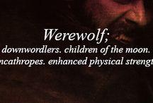 Werewolves / by Kiersten Schulze