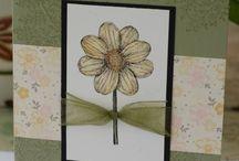 Daisy cards / by Karen Kaehn