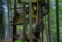 TREE HOUSES / Since the early days of watching Tarzan, I have been in love with tree houses. Here is a collection of some of my favorite. / by Linda Blunk