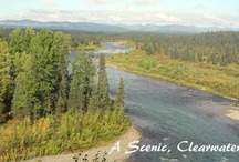 Alaska Fly Fishing / Welcome to the wonderful world of Alaska fly fishing! / by Alaska's Wilderness Place Lodge