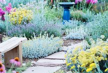 Outdoor space / by Katie McNeill