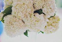 ::flowers & table settings:: / by M. B. C.