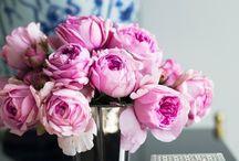 Floral / by 'Becca'lise Deveaux