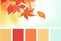 Color, color, color!  / by Celeste LeBoeuf