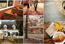 Fall / by Erin Wilson