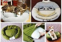 Pet projects / by Kathy Simmons Siegmund