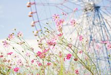 Life Is Like… A Ferris Wheel? / by Adelia Tambunan