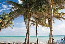 Key West! / by Jen Rowan