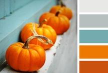 Color Schemes / by Alexis Elgarico
