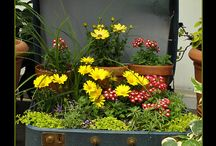 Jardines, galerías, patios y balcones. Deco / by El rincón de mi abuela Anita