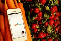App / by CarrotLines Powered by Tommy Europe